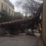 Maltempo: pioggia intensa in Calabria, danni nel Reggino