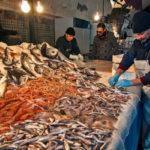 Lamezia: Polizia Locale e veterinari ispezionano pescherie cittadine