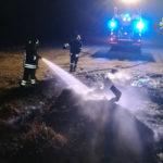 Incendi: a fuoco rifiuti sulla spiaggia di Rocelletta di Borgia
