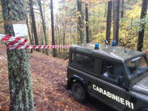 'Ndrangheta: uomo ucciso nel Reggino, ferito grave un bambino