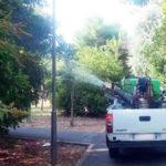 Comune Crosia: al via la disinfestazioneadulticida sul territorio