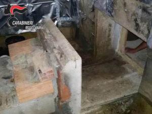 Droga: serra per coltivare marijuana in un bunker a Plati'