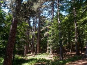 Ambiente: terza edizione delle Sere Fai d'Estate