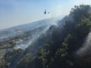 Incendi: boschi in fiamme nel Catanzarese, Impegnato elicottero