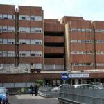 Formiche in ospedale a Reggio Calabria, area già bonificata