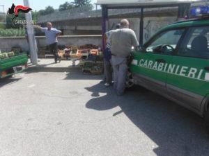 Controlli Cc in area mercato a Catanzaro, sanzioni a commercianti
