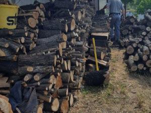 Furto di legname a Roggiano Gravina, una denuncia