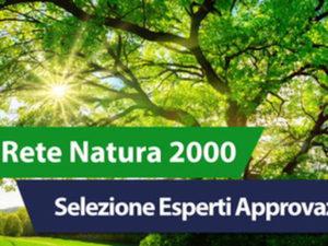 Ambiente: scelti 10 esperti monitoraggio Rete natura 2000