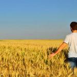 Agricoltura: pubblicato bando Psr per insediamento giovani