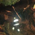 Maltempo:  fulmine abbatte albero e causa disagi ad Albi