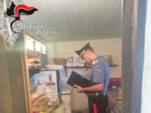 Sicurezza: controlli carabinieri a Ricadi, Nicotera e Tropea