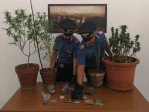 Droga: marijuana e hashish in casa, arrestato a Catanzaro