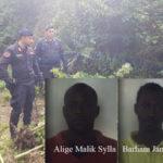 Droga: coltivavano canapa indiana, due arresti nel Reggino