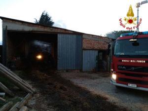 Capannone in fiamme nel Vibonese, morti due animali