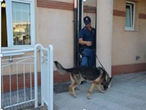 Droga: controlli davanti scuole Catanzaro, sequestrata marijuana