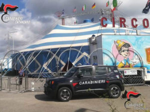 Carabinieri controllano impresa circense, denunciato titolare