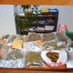 Droga: 2 kg marijuana nel bagno del negozio a Cosenza, denunciato