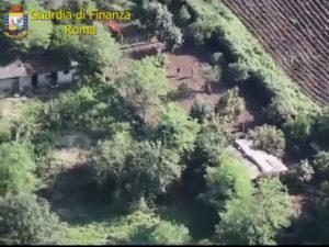 Droga: Gdf sequestra piantagione di cannabis vicino a Roma