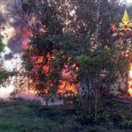 """Incendi: ancora roghi in Calabria; Tansi, """"e' mafia dei boschi"""""""