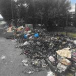 """Lamezia: rifiuti, D'Alessi(Lega) """"la città non può più attendere"""""""
