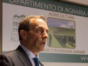 Universita': Zimbalatti riconfermato Direttore Dipartimento Agraria