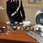 Droga: produzione e spaccio, un arresto nel Catanzarese
