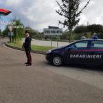 Controlli nel Vibonese: sequestri e denunce dei Cc