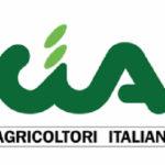 A Lamezia Terme il Forum olivicolo nazionale di Cia