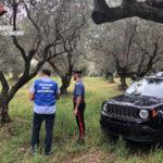 Detiene olio di oliva oltre la giacenza, multata impressa agricola