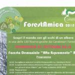 """""""ForestAmica"""" a cura del Reparto Carabinieri Biodiversità"""
