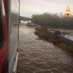 Maltempo: Calabria; albero cade su auto, ferita una persona
