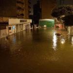 Maltempo: pioggia e vento a R.Calabria, albero su auto in sosta