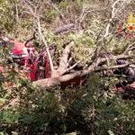 Platania: mezzo agricolo si ribalta, ferito il conducente