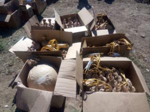Gdf Vibo sequestra 190 Kg fuochi pericolosi, tre denunce