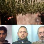 Droga: tre arresti nel Reggino, sequestrata marijuana