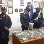 Droga: 2,8 kg marijuana in casa, arrestati anziani coniugi