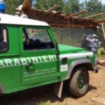 Abusivismo: 4 denunciati nel Parco dell'Aspromonte