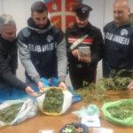 Droga: padre, madre e figlio arrestati nel Cosentino