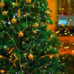 Natale: Coldiretti, alberi finti inquinano 10 volte quelli veri