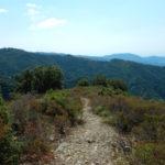 Ambiente: Valli Cupe, monastero naturale al centro della Calabria