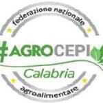 Agricoltura: Agrocepi incontra il Consigliere regionale Mauro D'Acri
