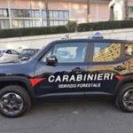 Rifiuti: due denunce dei carabinieri forestali a Crotone