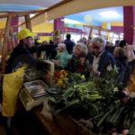 Agricoltura: Coldiretti, appesantiti oneri trasformazione prodotti