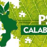Regione: Psr, al via domande misure forestali a trascinamento