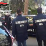 Controlli Nas nel Catanzarese: chiuse 2 parafarmacie, 12 denunce