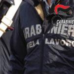 Lavoro nero: sospesa attivita' azienda boschiva nel Vibonese