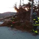 Maltempo: Calabria; situazione migliora, danni da vento e mareggiate