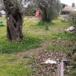 Lamezia: Gigliotti(Italia Nostra), Sant'Eufemia vive nel degrado