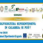 """AgrariaUniRC: Seminario sulla """"Olivicoltura superintensiva"""""""