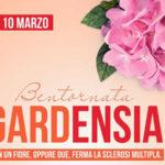 Una gardenia e un'ortensia a fianco persone con sclerosi multipla